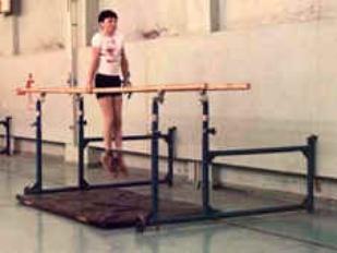 Брусья гимнастические пристенные массовые